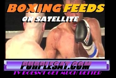 PURPLESAT BOXING FEEDS