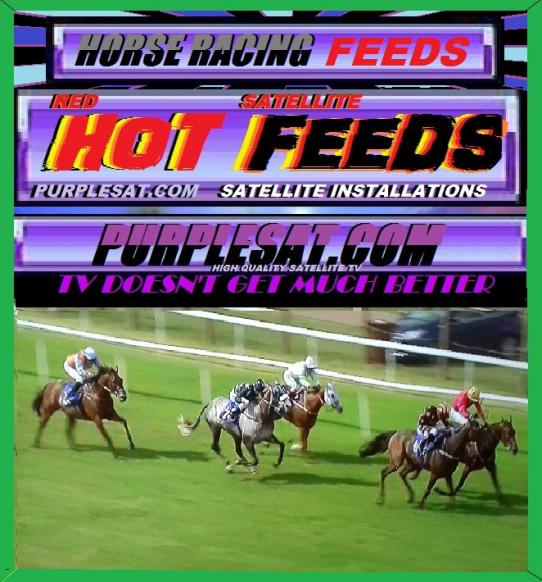 HORSE RACING FAST FEEDS PURPLESAT